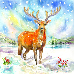 Stag Christmas Card Pack