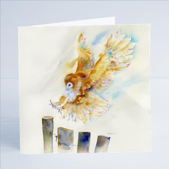 Barn Owl Bird Card-Sheila Gill Fine Art