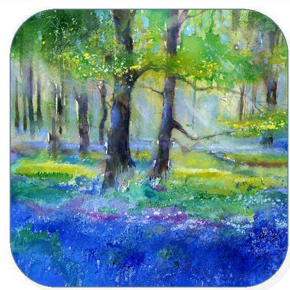 Bluebell, Flower -  Coaster