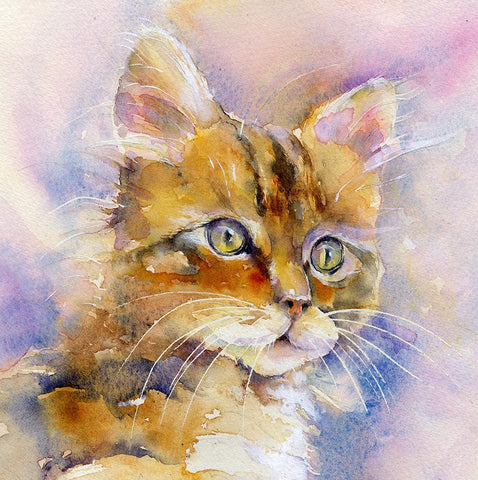 Cat Card-Sheila Gill Fine Art