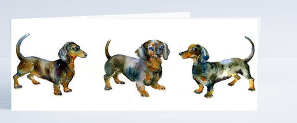 Dachshund Dog Card-Sheila Gill Fine Art