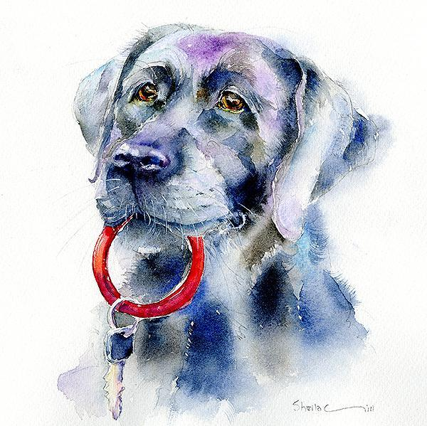 Black Labrador Dog Card-Sheila Gill Fine Art
