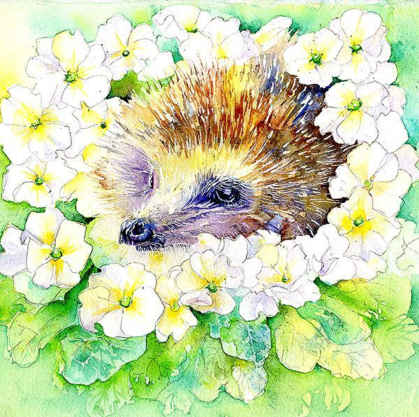 Hedgehog Card-Sheila Gill Fine Art