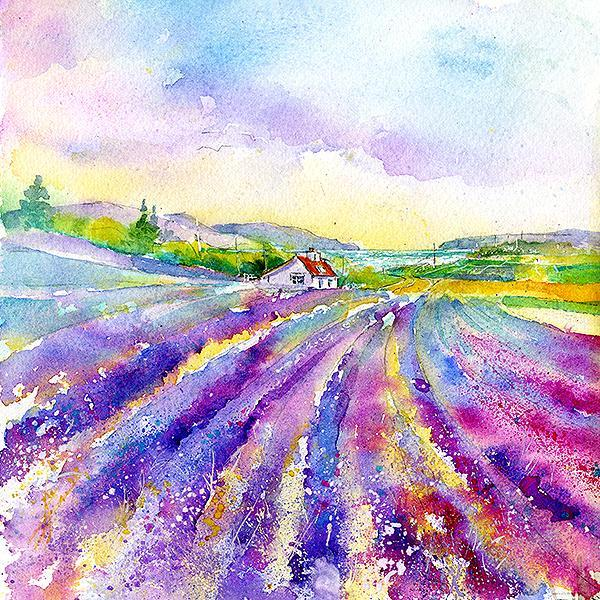 Lavender Field, Flower - Card-Sheila Gill Fine Art