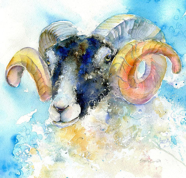 Ram Sheep Card-Sheila Gill Fine Art
