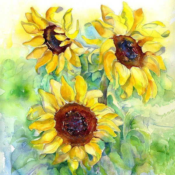 Sunflower Card-Sheila Gill Fine Art
