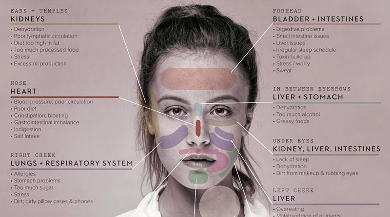 chinese face mapping skin health