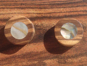 Abalone Zebrawood Stud Earrings