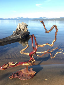 Manzanita Abstract Sculpture (sold)