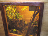Lepidoptera Enclosure (sold)