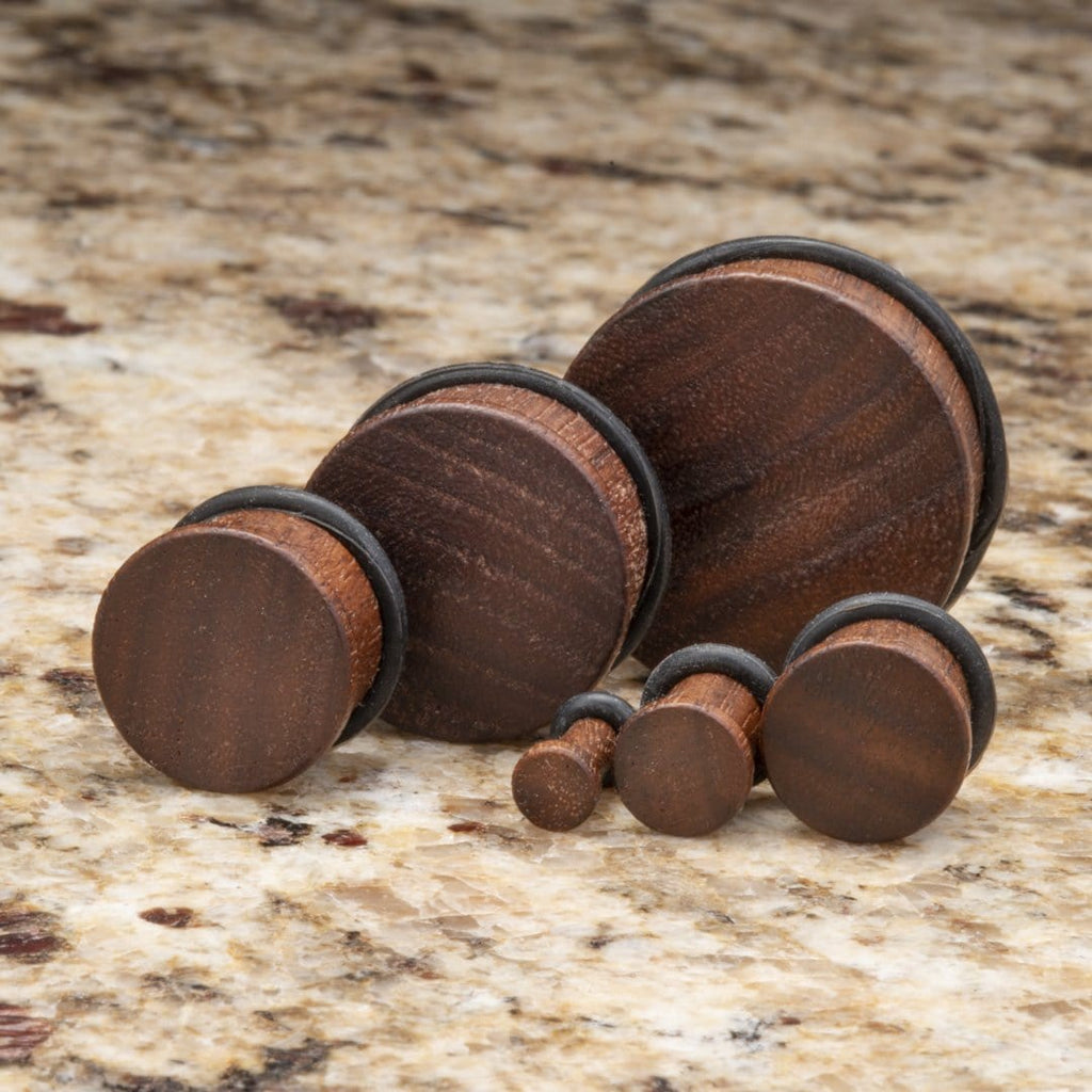 Black Walnut Single Flare Plugs