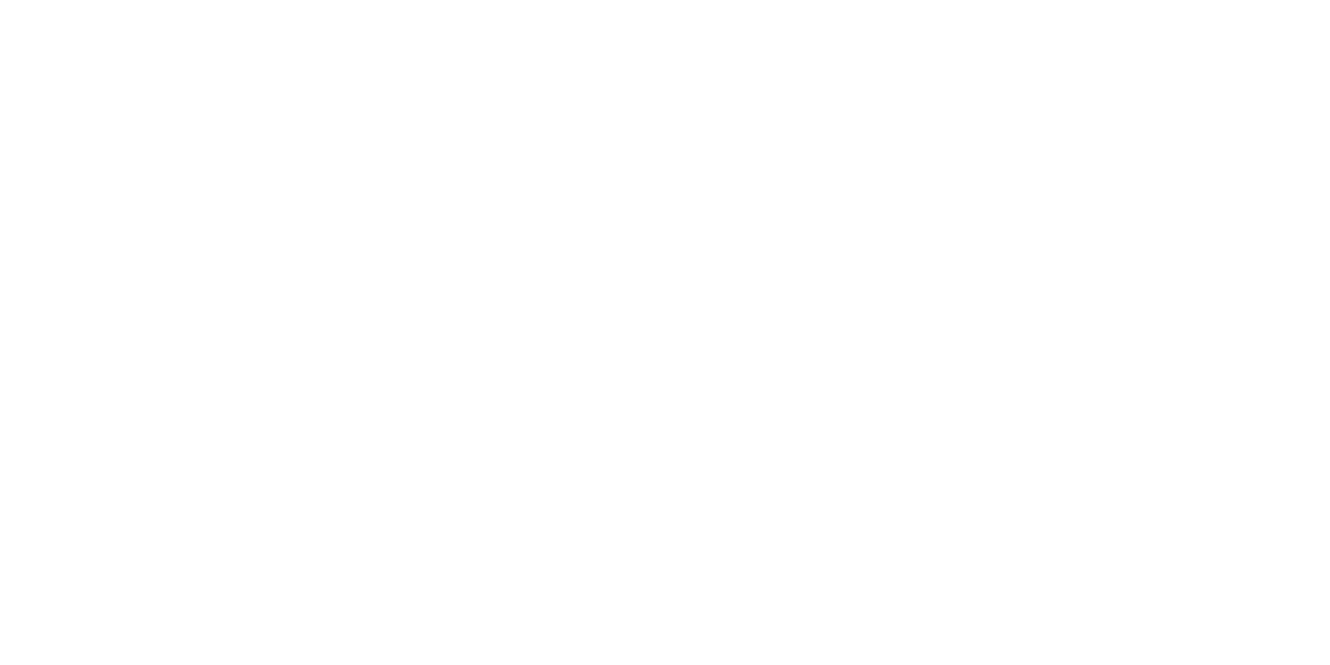 Burlesque Of North America Graphic Arts High Quality Screenprinting