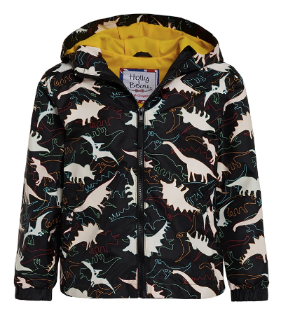 Color Changing Dinosaur Raincoat