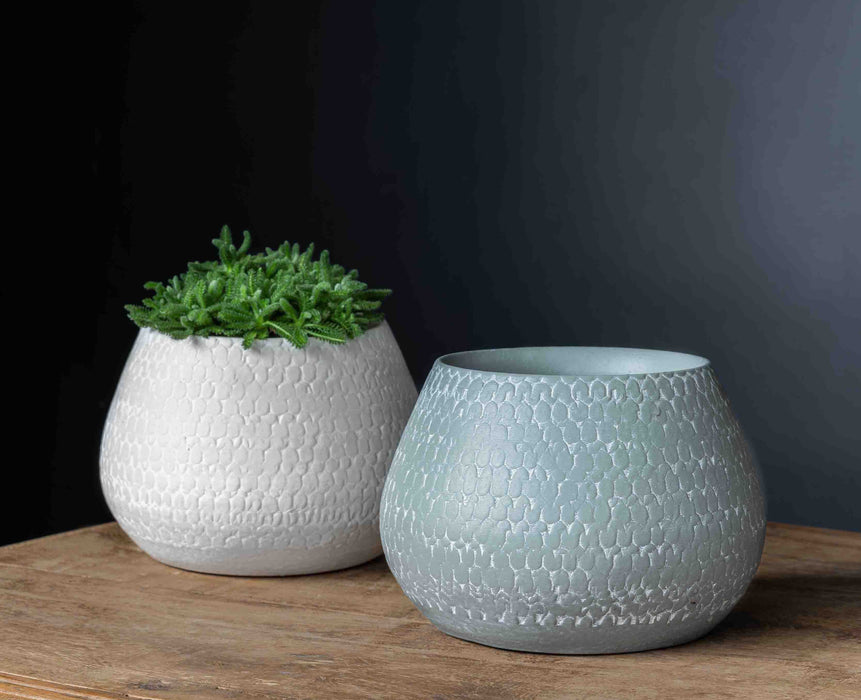 Scalloped Planter - Set of 8 in Grey and Eggshell Mix
