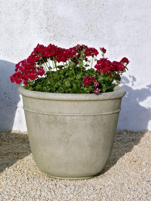 Carema Planter, Medium