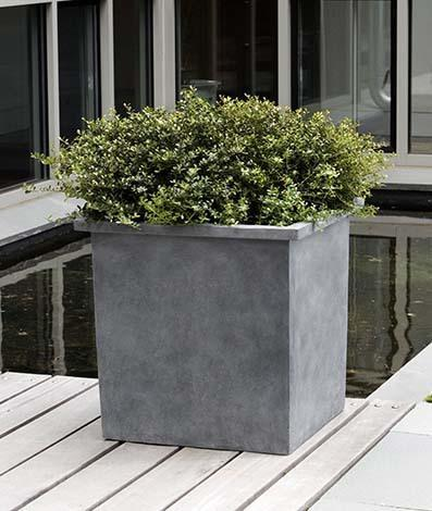 Bardo Square Lite Planter  - Lead Lite