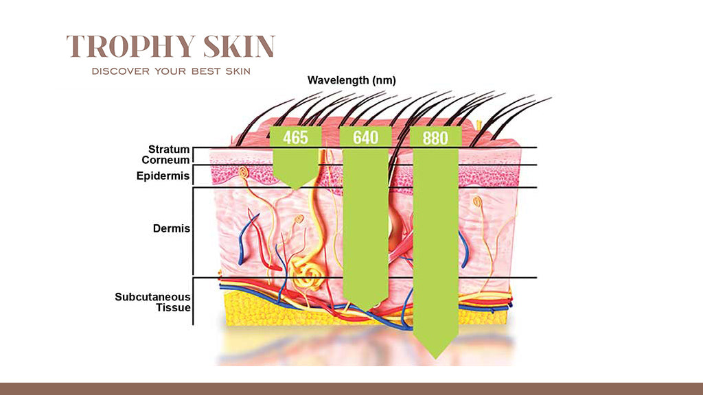 Different wavelength of lights penetrate the skin at different levels to help heal the skin from within.