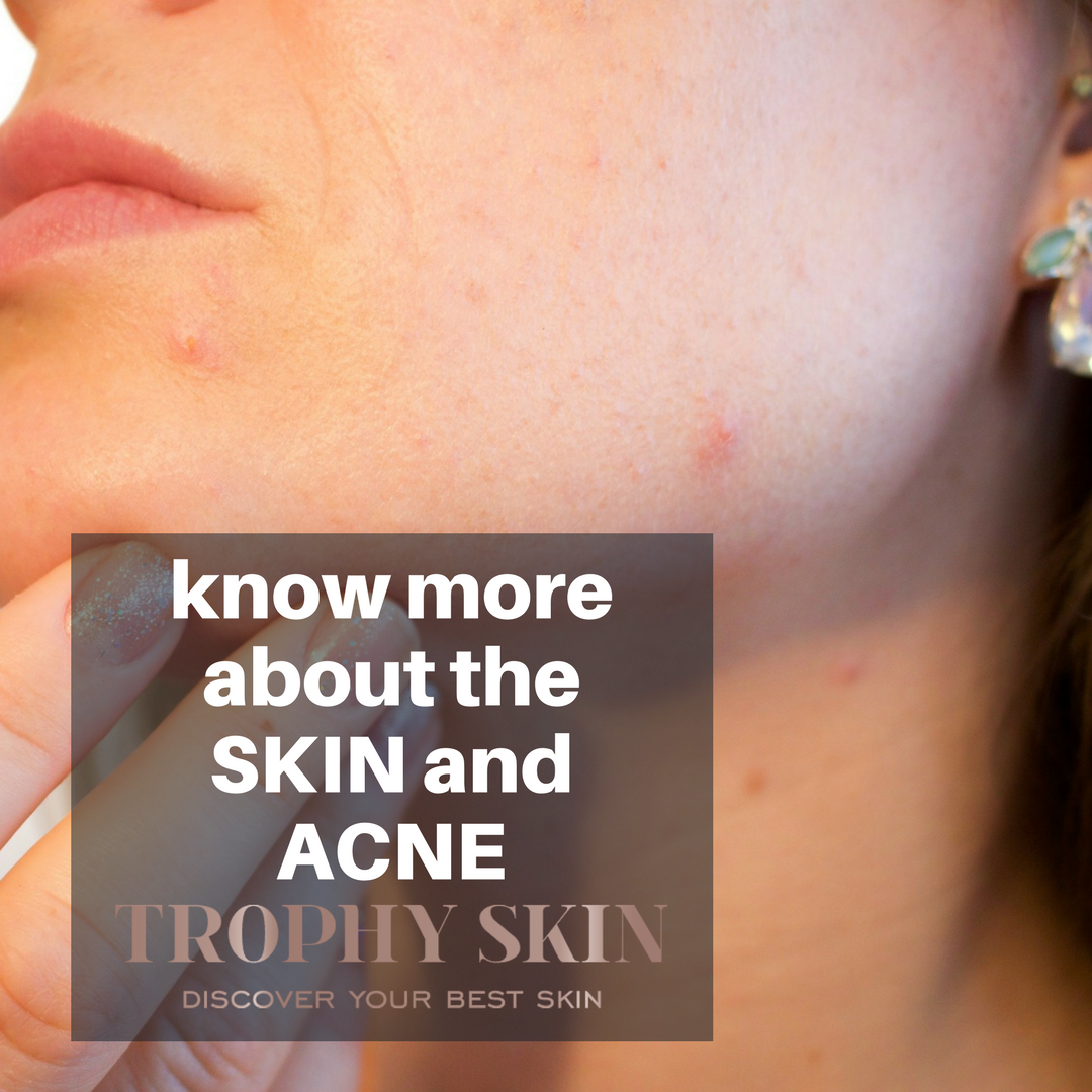know more about the SKIN and ACNE