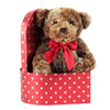 Valentine's Day Teddy Bear in Deluxe Gift Box - Kids Valentines Day Gift