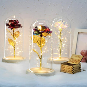 Valentine's Gifts 6 Colour Beauty And The Beast Red Rose In A Glass Dome