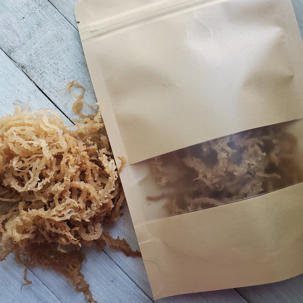 Raw Wildcrafted Sea Moss