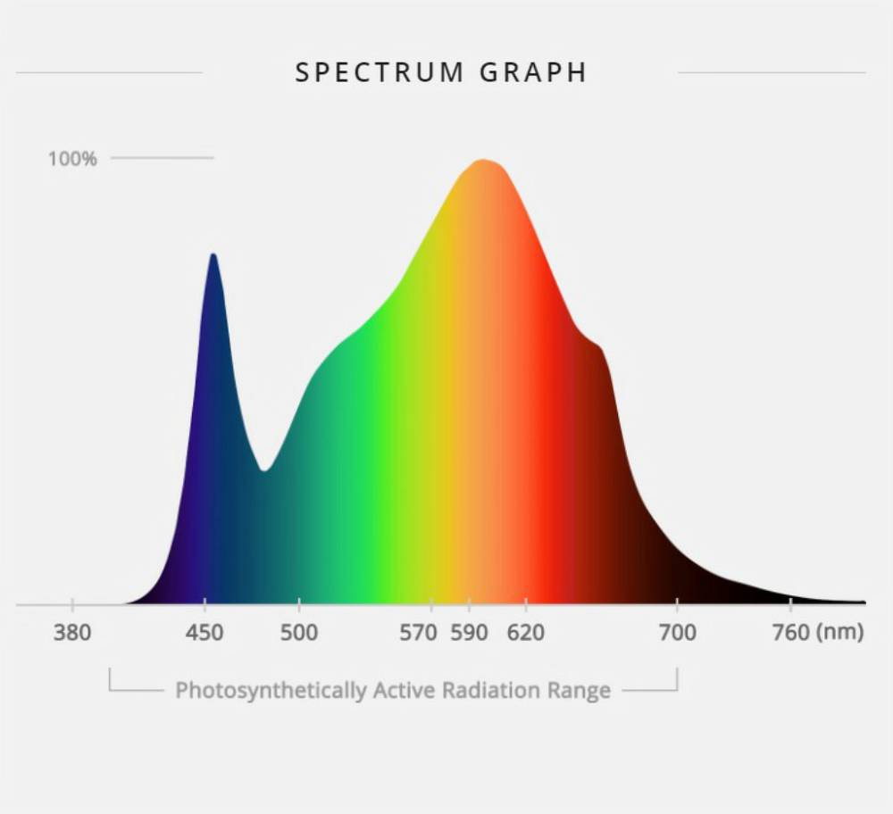 How to Choose an Ideal Full Spectrum LED Grow Light