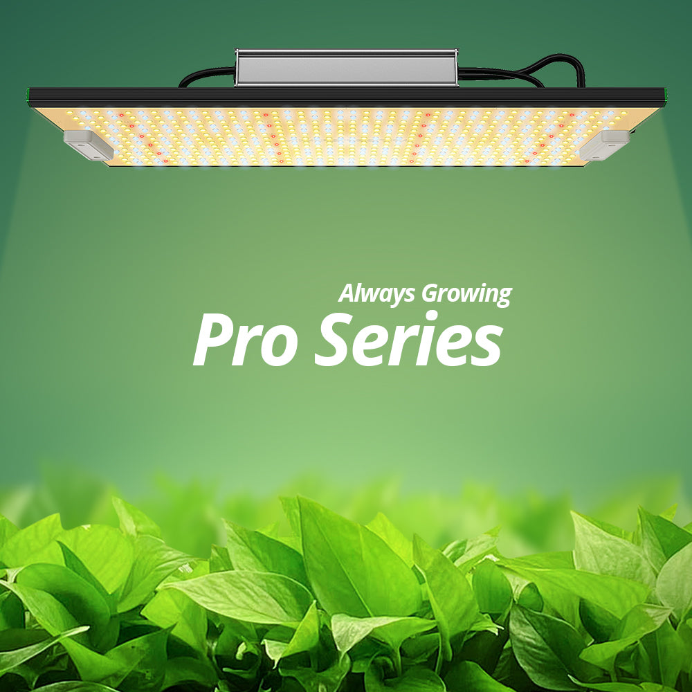 Best Budget LED Grow Lights -- ViparSpectra P Series
