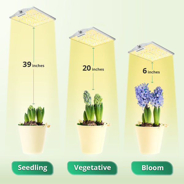 LED grow light plants growing stage