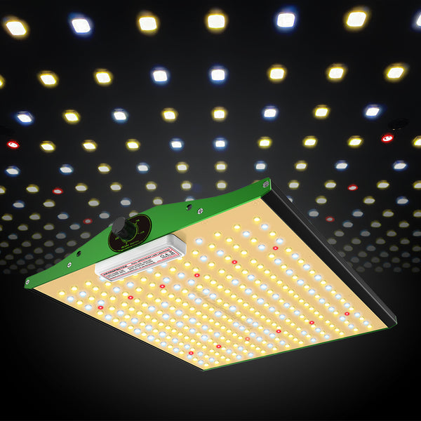 led grow light diodes