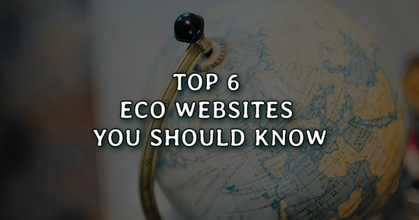 Top 6 Eco Websites You Should Know Which Promote Earth Positivity
