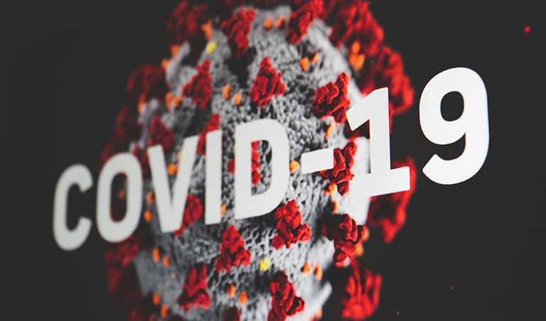 How Our Mother Nature Is Healing During Covid-19 Pandemic