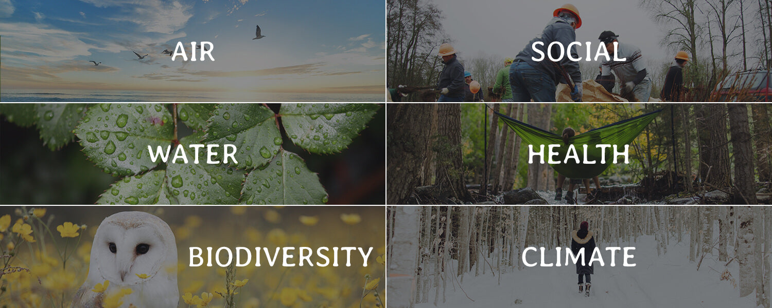 Air Social Water Health Biodiversity Climate