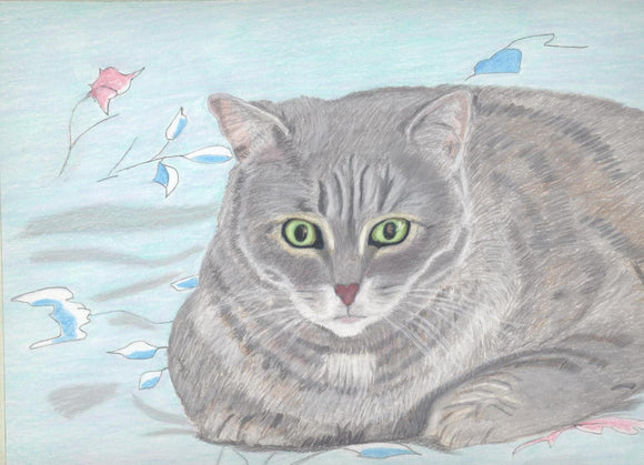Our Loved Cat Betty - Photo enclosed in greeting card