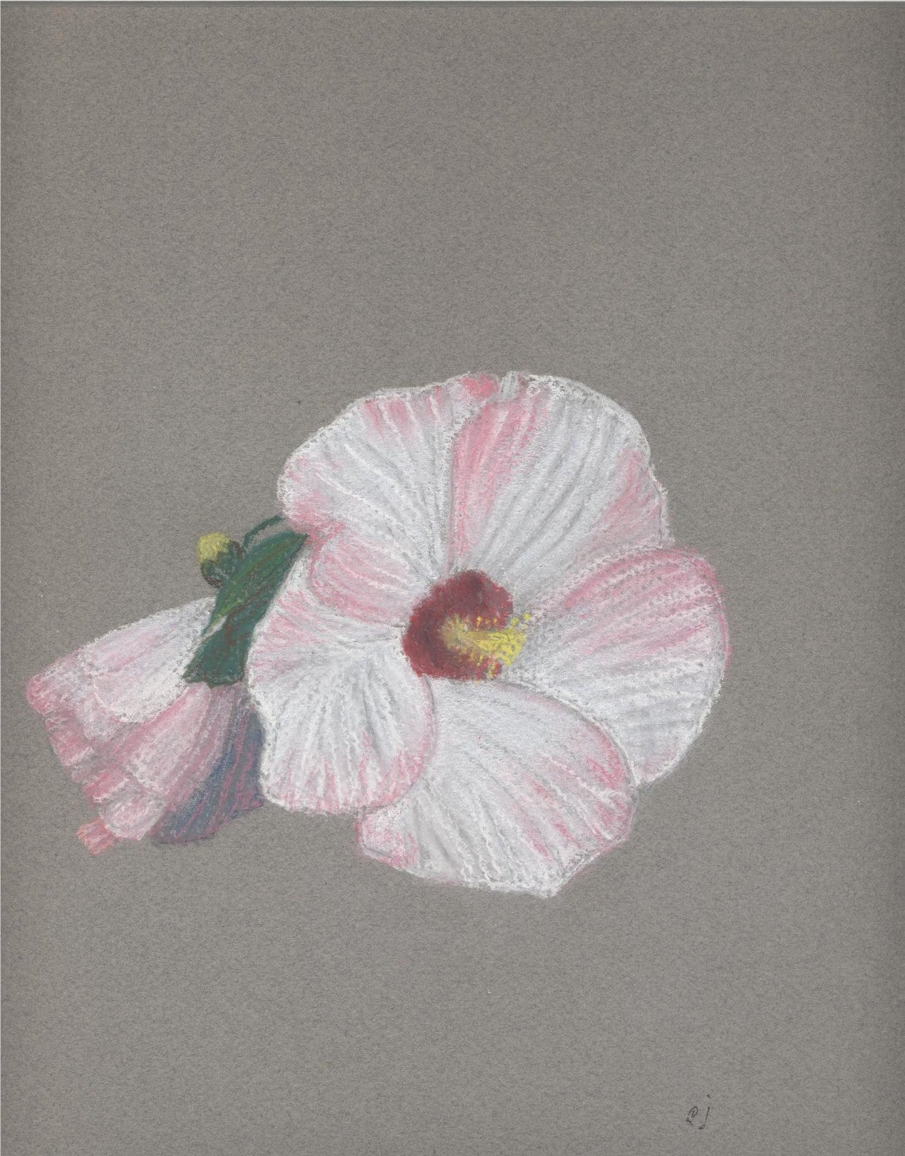 "Hibiscus in Full Bloom - Print of original painting on a 8""x10"" canvas"