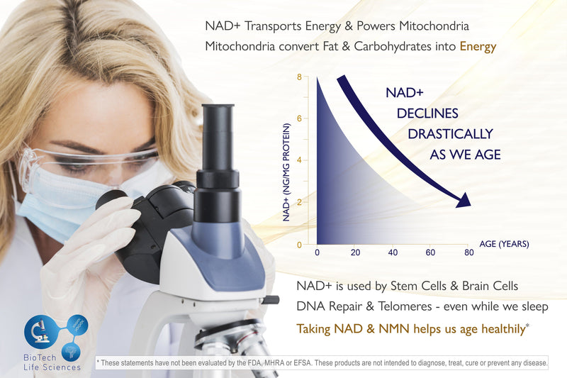 Buy NMN & NAD+ Supplement Powder - Pharmaceutical Grade 99.78% Purity NAD+ NMN BioTech Life Sciences