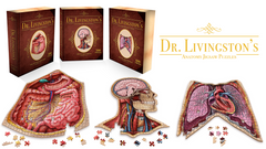Human Anatomy Jigsaw Puzzle Bundle | Unique Shaped Science Puzzles with Accurate Medical Illustrations