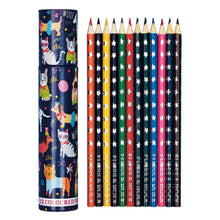Load image into Gallery viewer, Pack of 12 Colored Pencils