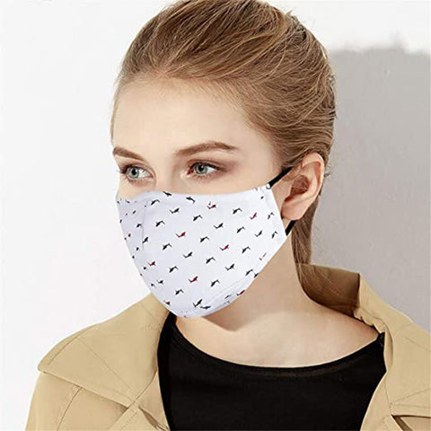 Mask Anti Pollution Dust proof Windproof Foggy Haze Pm2.5 Mask