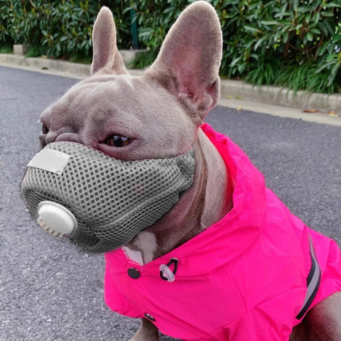 Dog Dust-Proof Mask