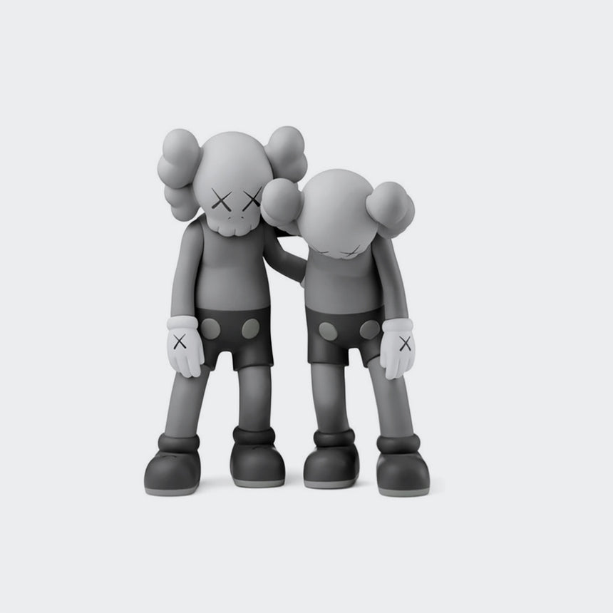 Kaws Companion Along The Way Grey