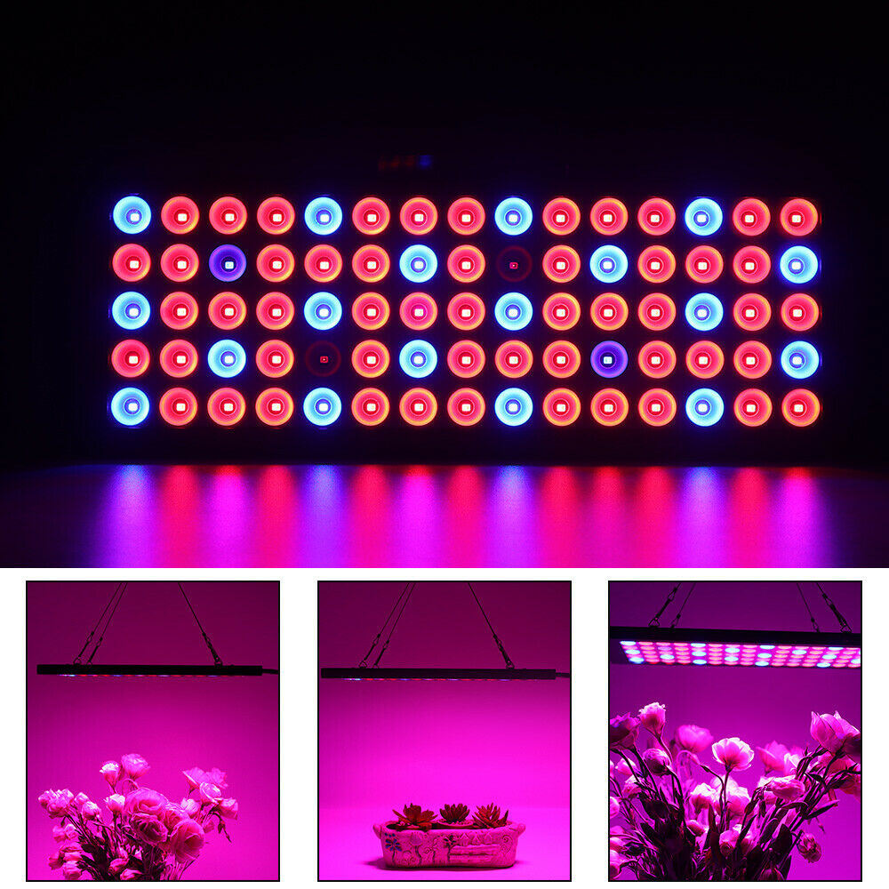 Hydroponic 1000W LED Grow Light Full Spectrum For Indoor Flower Plant Lamp UV IR
