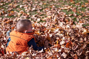 6 Fun Activities for Kids To Do This Fall