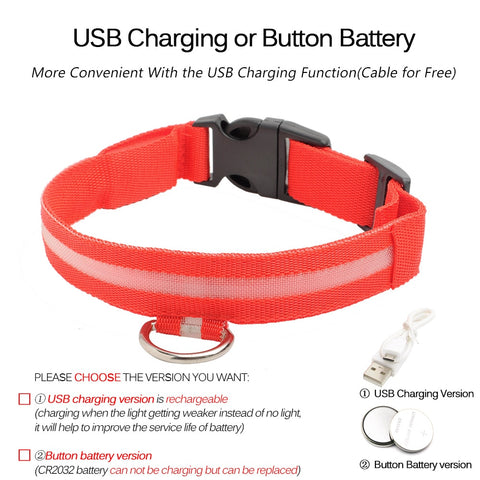 USB Charging Led Dog Collar Anti-Lost/Avoid Car Accident