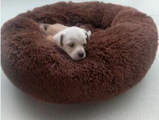 Pet Comfortable Donut Ultra Soft Washable Dog And Cat Cushion Bed