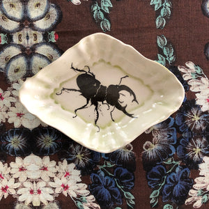 Stag Beetle Dish