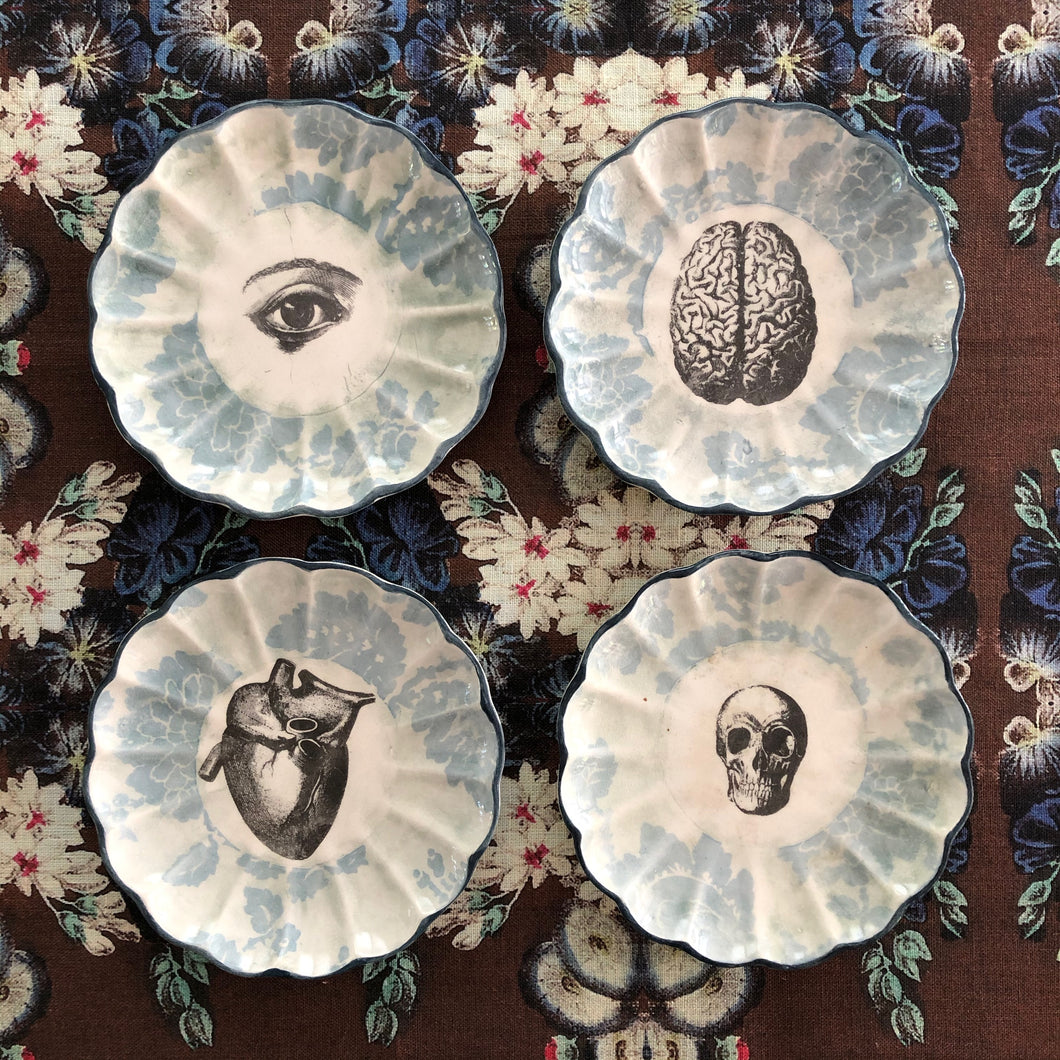 Set of Four Small Anatomy Plates