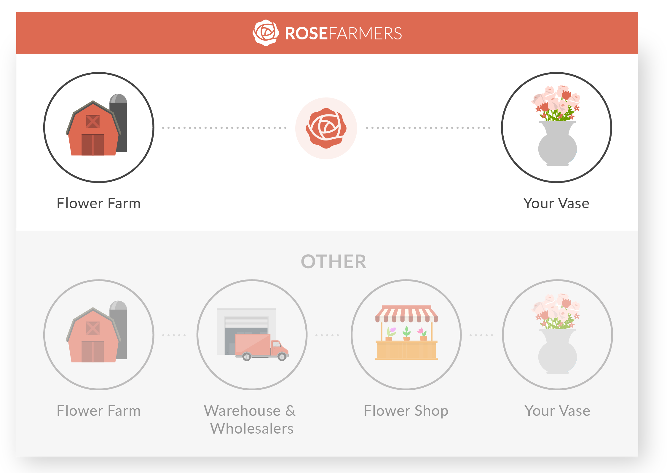 Rose Farmers - Farm Fresh Roses Direct to Your Door