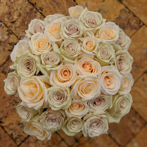Cream Sympathy Bouquet