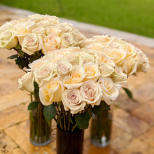 Load image into Gallery viewer, Cream Dazzler Long Stem Roses