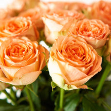 Load image into Gallery viewer, Orange Citrus Long Stem Roses